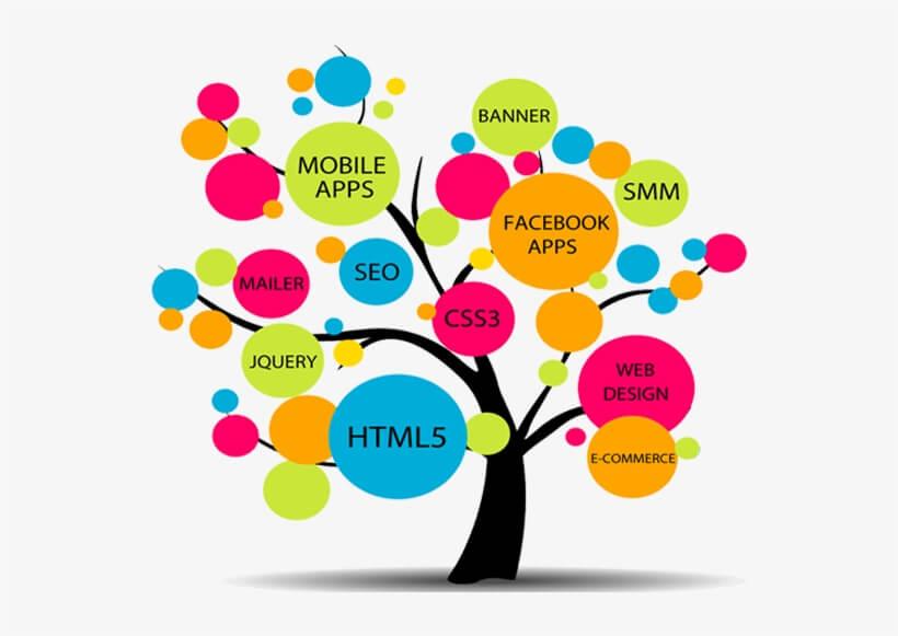 web development tamilnadu